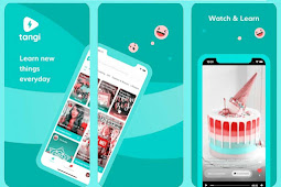 Everything you Need to Know About Google Tangi: Download link (2020)