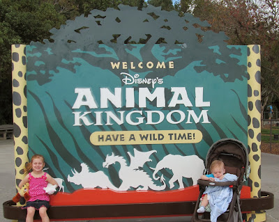 Day 3: Disney's Animal Kingdom
