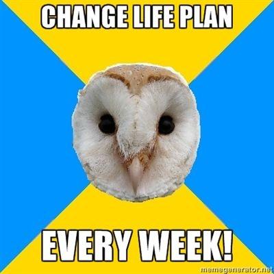 bipolar owl change life plan