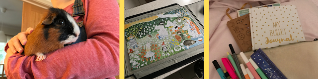 Three images. To the left is a black, white and tan guinea pig being held in someone's arm, on the middle is a completed jigsaw puzzle showing illustrated images of Moomin characters, the image on the right is an open plain canvas bag with stationary items and coming out of the canvas bag is a book.