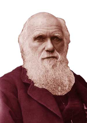 charles darwin; darwin; charles darwin (academic); charles; charles darwin life; who was charles darwin; charles darwin biography; charles darwin life story; biography of charles darwin; evolution; charles darwin myths; charles darwin quotes; charles darwin (author); life of charles darwin; natural selection; charles darwin history; charles darwin religion; history of charles darwin; tudo sobre charles darwin