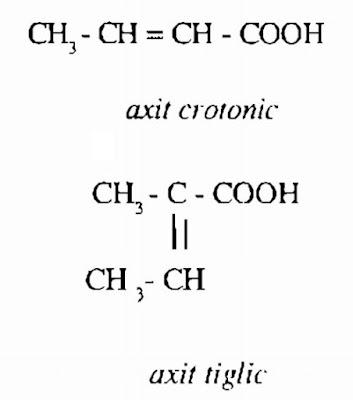 Thành phần hóa học Ba Đậu - Croton tiglium - Nguyên liệu làm thuốc Nhuận Tràng và Tẩy