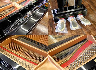 Cửa hàng bán đàn grand piano Yamaha C1SG - Silent ở Tphcm