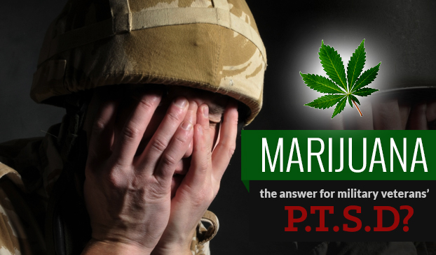 Image result for Safer relief for veterans? New York approves use of medical cannabis for PTSD