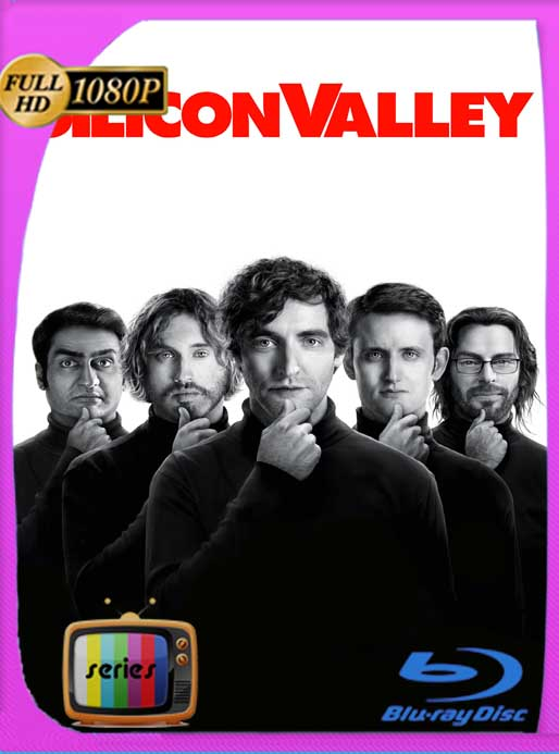 Silicon Valley Temporada 1-2-3-4-5-6 HD [720p-1080p] Latino [GoogleDrive] SXGO
