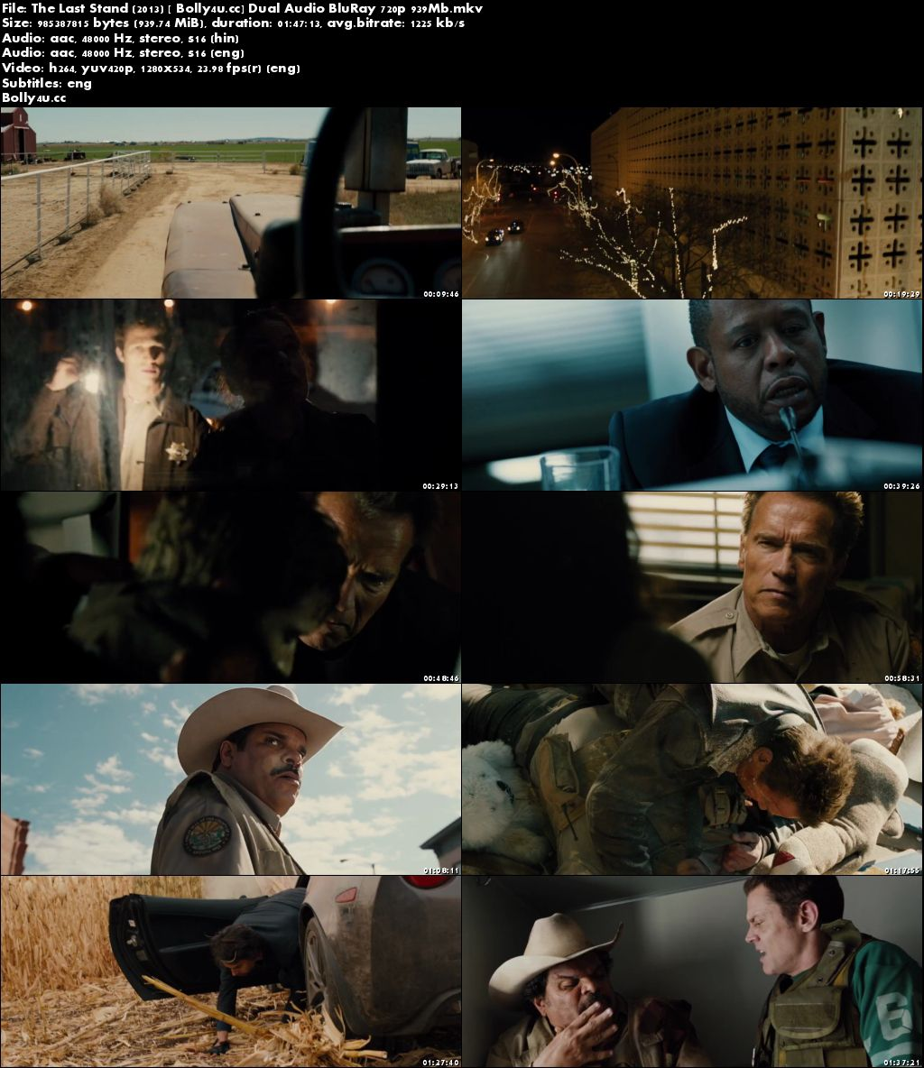 The Last Stand 2013 BluRay 350MB Hindi Dual Audio 480p
