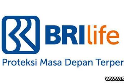 Lowongan Kerja Pekanbaru : PT. Asuransi BRI Life Desember 2017