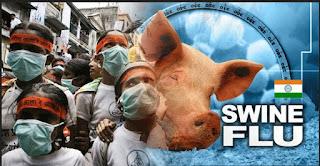 Thursday Official swine flu, influenza flu, swine flu complications, avian flu virus, swine flu wiki, flu incubation period, swine flu virus symptoms, flu shot, influenza, how long does the flu last, swine flu symptoms in child, difference between cold and flu, cold vs flu, how to treat the flu, influenza treatment, flu treatment, flu like symptoms, flu symptoms and treatment, cold or flu, what causes the flu