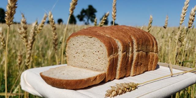 Grillon le pain Crickbread farine de grillons