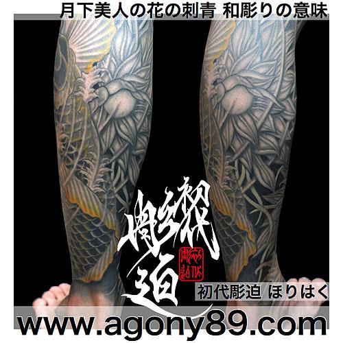 刺青デザインの意味、月下美人の刺青デザイン、月下美人の刺青和彫りの意味、月下美人のタトゥーの意味、刺青意味、和彫り、花のタトゥーデザイン、洋彫り、タトゥー意味、刺青和彫り、タトゥー、タトゥーデザイン画像、タトゥー画像、刺青、刺青デザイン、刺青画像、額彫り、tattoo meaning.flower tattoo meaning.japanese tattoo.flower tattoo design.japanese tattoo design.japanese tattoo meaning.ほりはく日記、初代 彫迫 刺青 ほりはく。tattoo. irezumi.design.gazou.