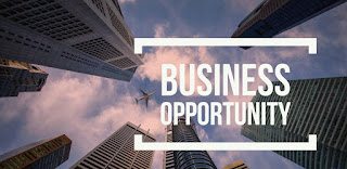 5 Successful Business Opportunities