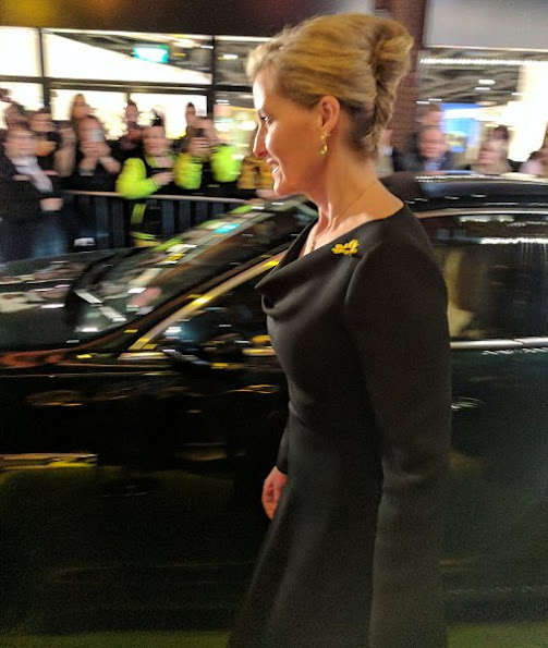 Countess Sophie wore Valentino Draped Cowl-neck Wool and Silk Blend Dress, Pomegranate Sofia pear drops in amethyst earrings