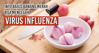 Info bagus Bawang Merah bisa mencegah virus influenza