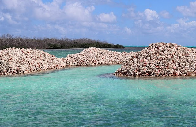 The island is made up of millions of conch shells