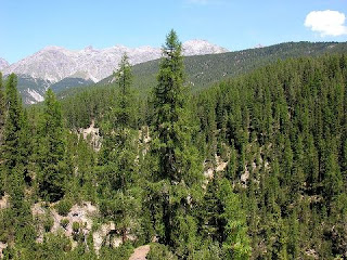 Lingkungan dapat diartikan sebagai suatu kesatuan ruang Artikel Pengertian Perubahan Lingkungan