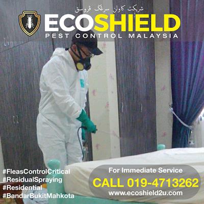 Pest Control Selangor
