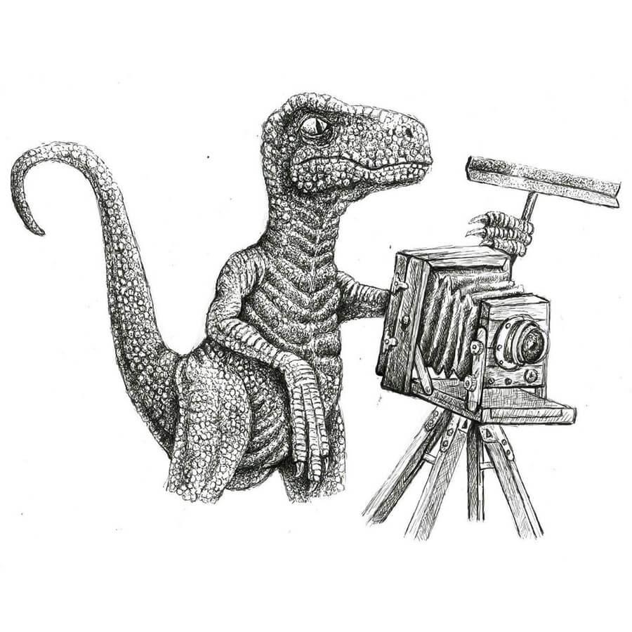 04-Photography-Raptor-Tim-Andraka-www-designstack-co