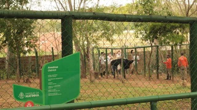 Requalificada, Matinha mantém animais bem cuidados e saudáveis