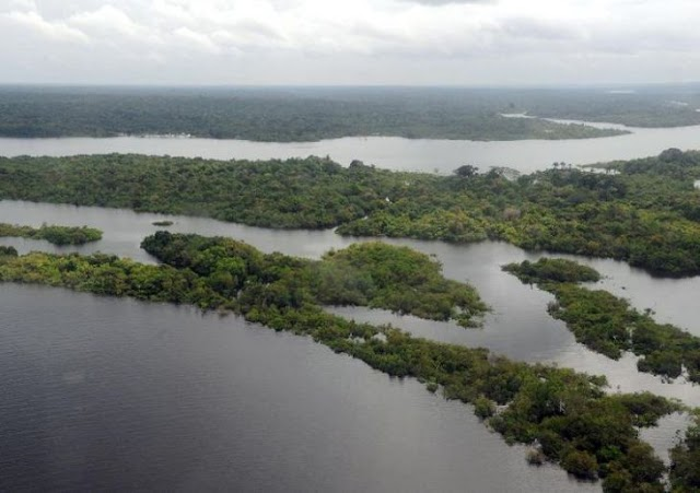 Depois da Alemanha, Noruega anuncia bloqueio de verba para o Fundo Amazônia