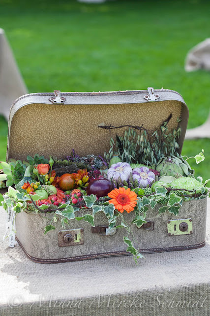 suitcase filled with flowers and vegetables