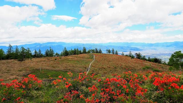 韮崎駅から激坂として有名な甘利山へヒルクライム。甘利山は6月には富士山を背景に一面に咲くレンゲツツジの絶景を楽しめます。甘利山から北精進ヶ滝へまわり(未舗装路あり)韮崎駅へ戻るサイクリングコース