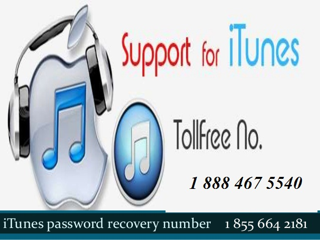 Contact phone number for itunes