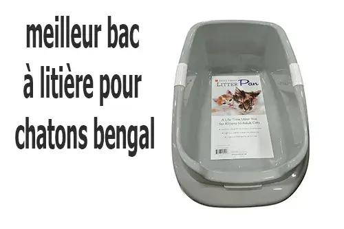 best litter box for bengal kittens