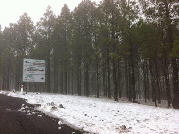 El Cabildo de Gran Canaria ordena desalojar vehículos de la cumbre