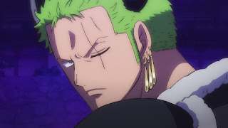 ワンピースアニメ ワノ国編 ロロノア・ゾロ | ONE PIECE Roronoa Zoro