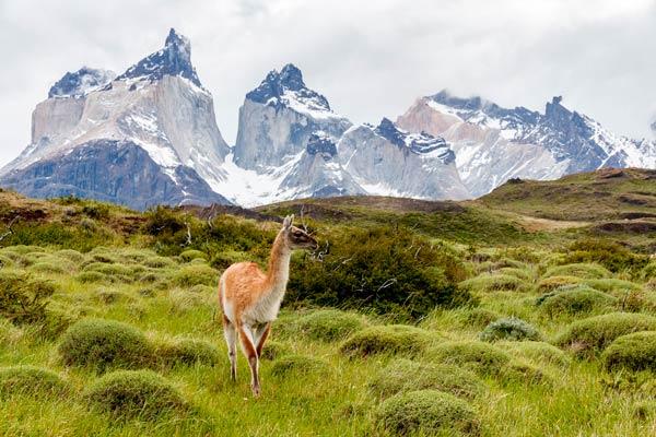 Parque Nacional Torres del Paine Trekking