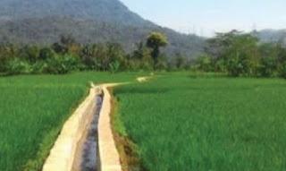 Desa Setiarejo Programkan Pembangunan Irigasi Secara Bertahap