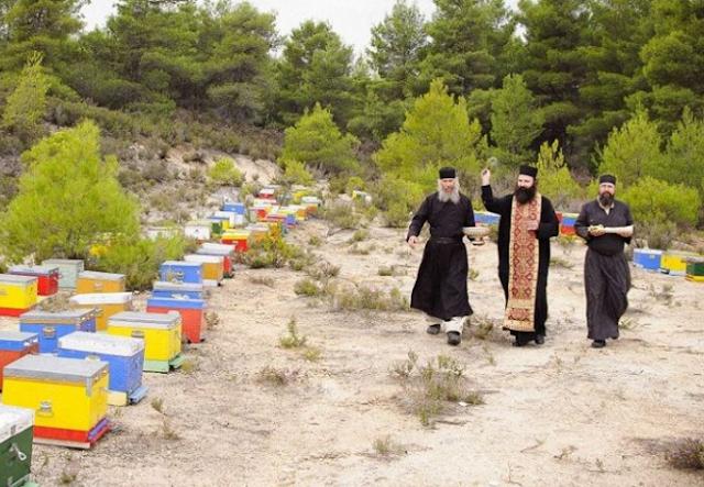 Μοναστηριακό μέλι: Όταν οι κληρικοί παράγουν μέλι