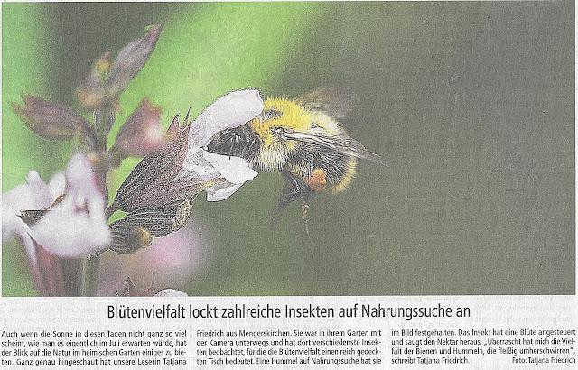 Weilburger Tageblatt-Tatjana Friedrich aus Mengerskirchen