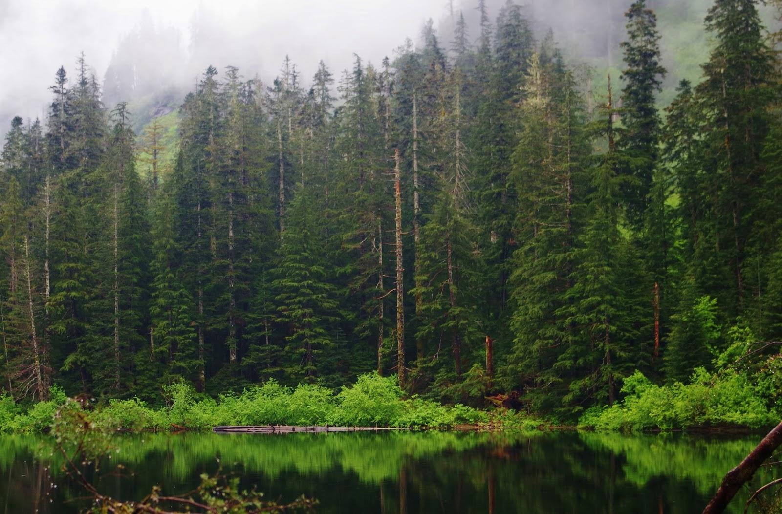 pacific northwest seasons northwest mountain lake hikes bucolic