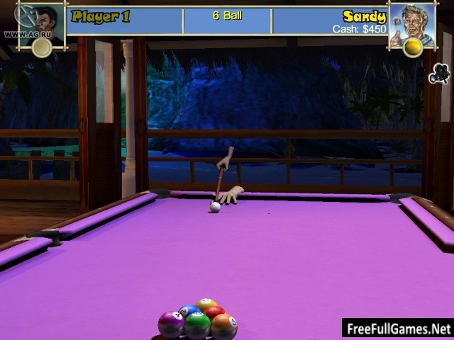 Pool Paradise PC Game Free Download Full Version