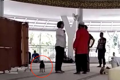 Wanita Pembawa Anjing ke Masjid di Bogor Ditetapkan Tersangka Penistaan Agama