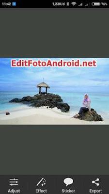 Aplikasi Edit Foto yang Ada Ikan Paus