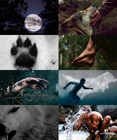 La canción del lobo
