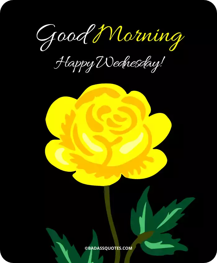 21 Beautiful Wednesday Good Morning Images Happy Wednesday