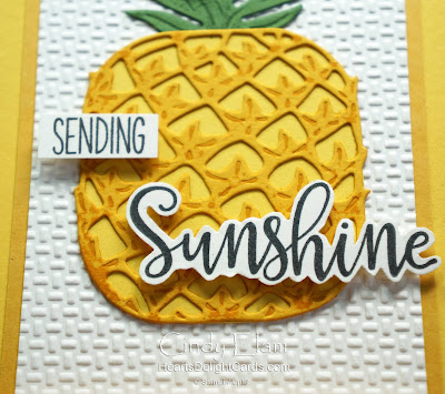 Heart's Delight Cards, Timeless Tropical, Sending Sunshine, 2020-2021 Annual Catalog, Stampin' Up!
