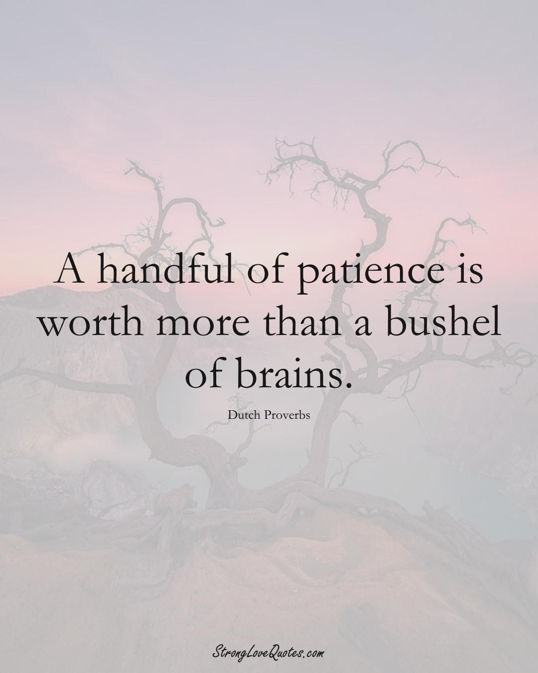 A handful of patience is worth more than a bushel of brains. (Dutch Sayings);  #EuropeanSayings