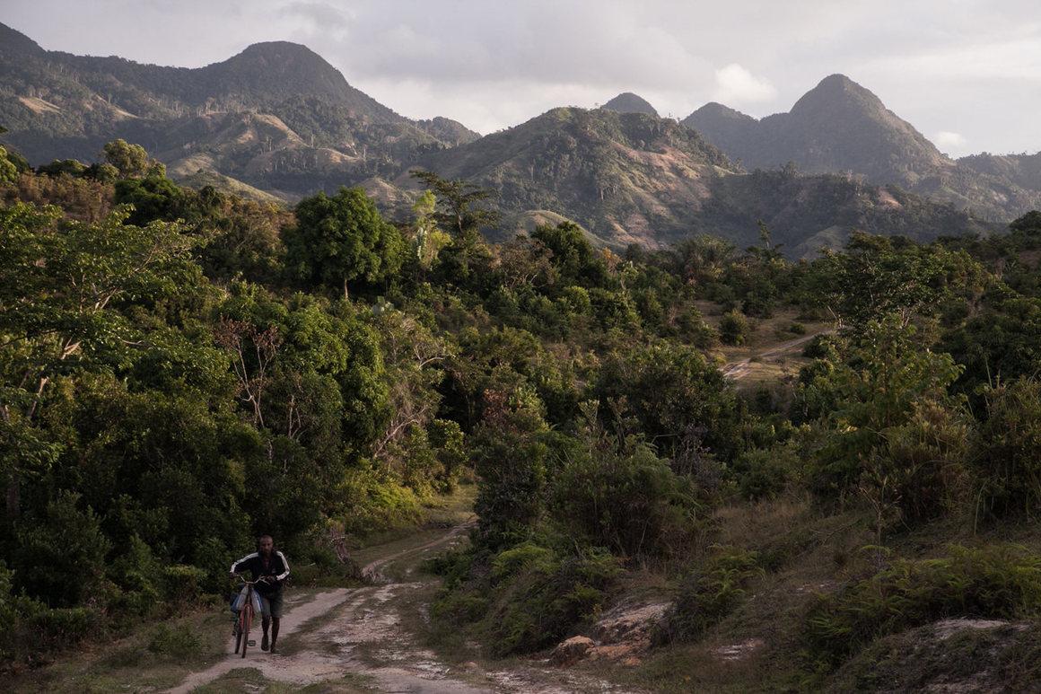 A man pushes a bicycle close to a vanilla plantation in Bemalamatra, Madagascar. RIJASOLO/AFP VIA GETTY IMAGES