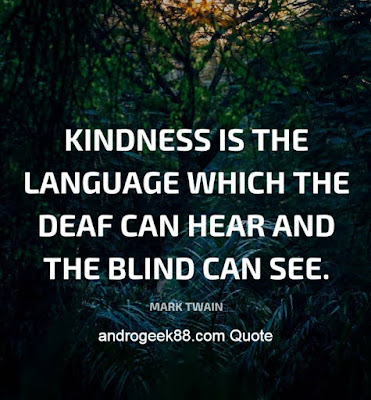 Kindness is the language which the deaf can hear, and the blind can see