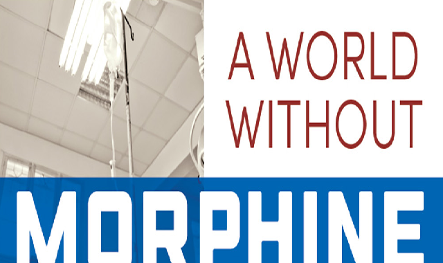 A World Without Morphine #infographic