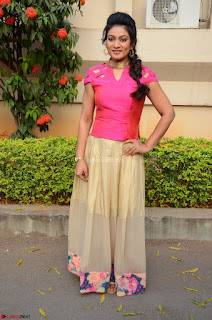 Ashmita in Pink Top At Om Namo Venkatesaya Press MeetAt Om Namo Venkatesaya Press Meet (83).JPG