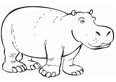 La Chachipedia Hipopótamos Para Colorear