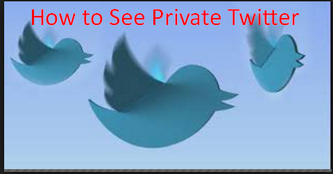 How to See Private Twitter