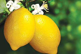18 Manfaat Lemon & Khasiat Buah Lemon Pada Tubuh Anda