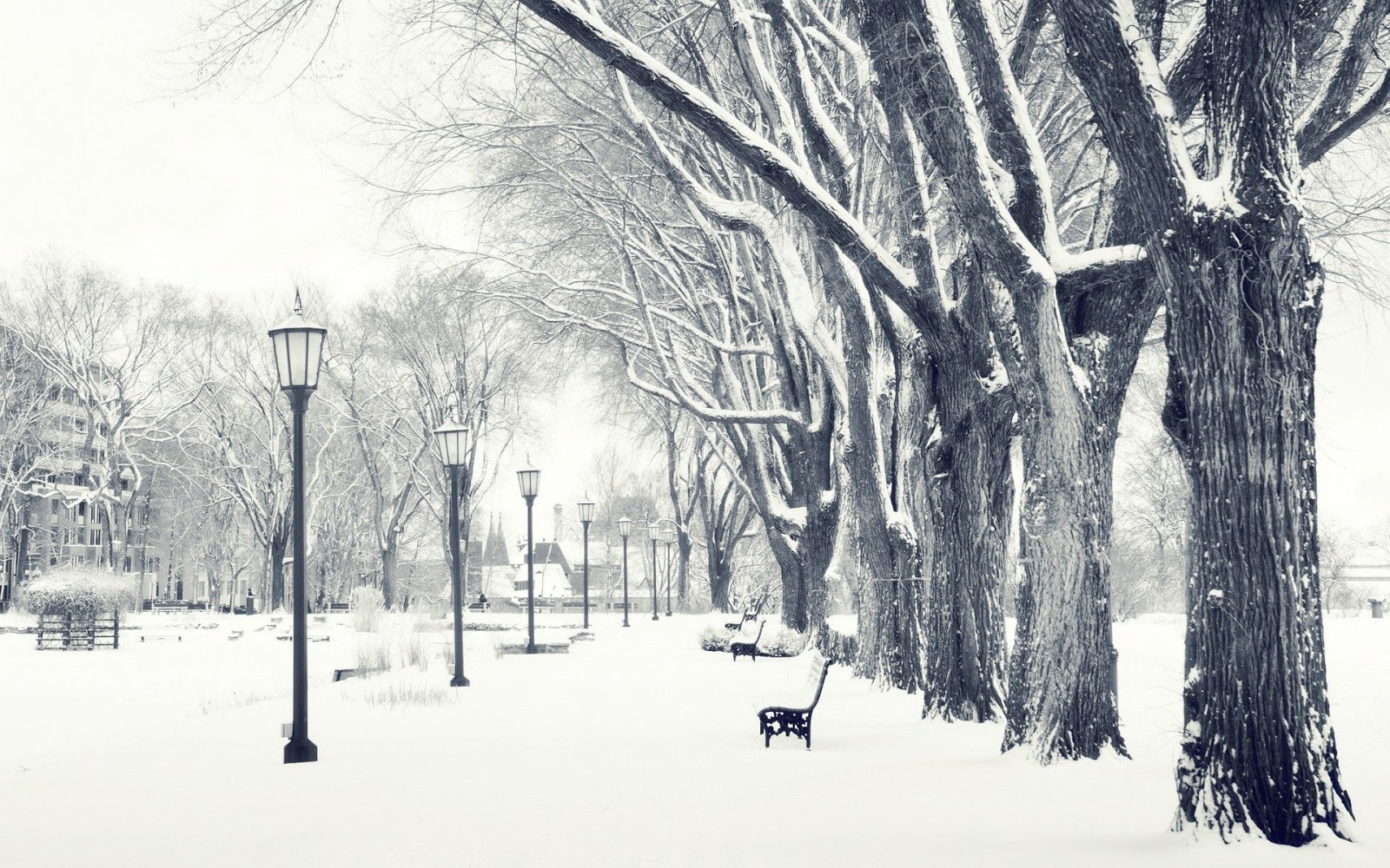 Snowfall Wallpapers