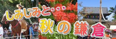しみじみと・・・鎌倉の秋